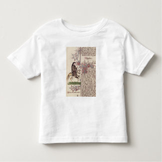 Portrait of Geoffrey Chaucer  facsimile from Toddler T-shirt