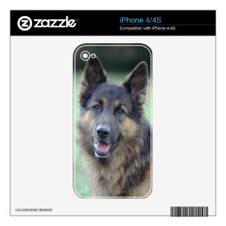 Portrait of German Sheppard Decals For iPhone 4S