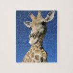 Portrait of Giraffe (Giraffa Camelopardalis) 2 Jigsaw Puzzles