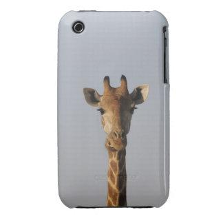 Portrait of Giraffe (Giraffa camelopardalis) Case-Mate iPhone 3 Case