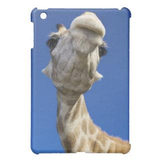 Portrait of Giraffe (Giraffa Camelopardalis) Cover For The iPad Mini