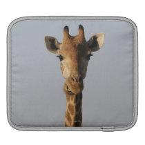 Portrait of Giraffe (Giraffa camelopardalis) Sleeve For iPads