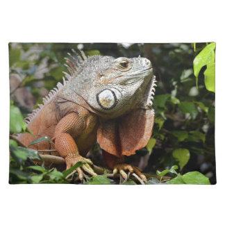 Portrait of green iguana place mat