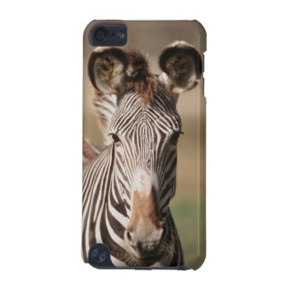 Portrait of Grevy's Zebra iPod Touch (5th Generation) Case