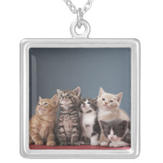 Portrait of group of kittens square pendant necklace