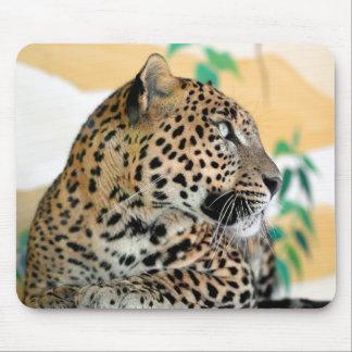 Portrait of jaguar mouse pad