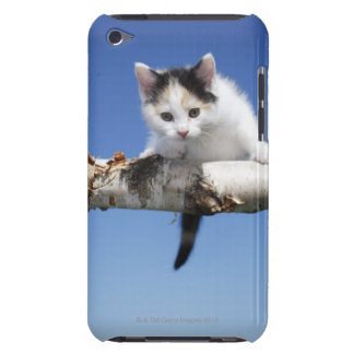 Portrait of Kitten iPod Touch Case-Mate Case
