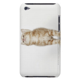 Portrait of kitten looking up iPod touch Case-Mate case