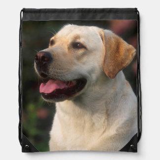 Portrait Of Labrador Retriever, Hilton Drawstring Backpack