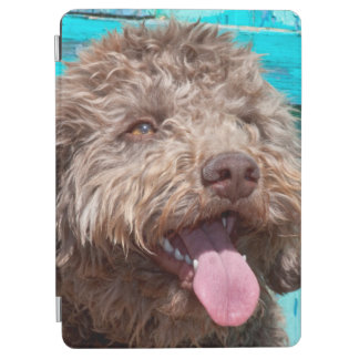 Portrait Of Lagotto Romagnolo In Front Of Blue iPad Air Cover