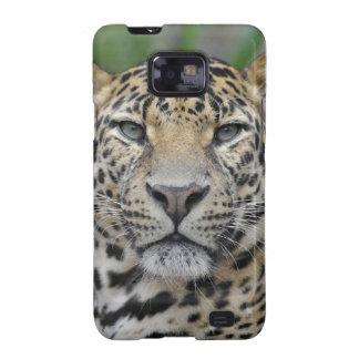 Portrait of Leopard Samsung Galaxy SII Case
