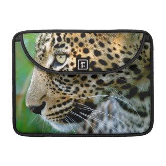 Portrait Of Leopard Panthera Pardus MacBook Pro Sleeve