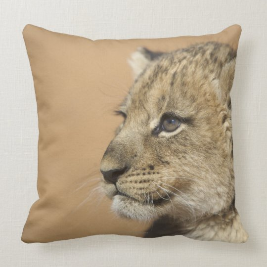 Portrait of Lion cub (Panthera Leo), Namibia Throw Pillow