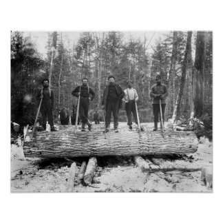 Portrait of Loggers, 1890 Posters