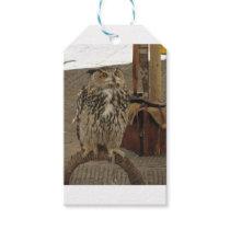 Portrait of long-eared owl . Asio otus, Strigidae Gift Tags