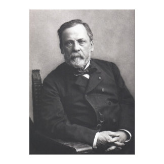 Portrait of Louis Pasteur by Nadar (Date pre-1885) Canvas Print