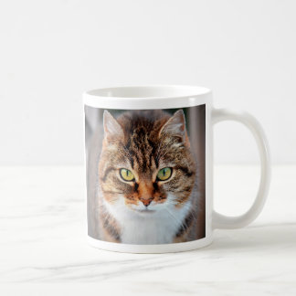 Portrait of Manx Cat Green-Eyed Coffee Mug