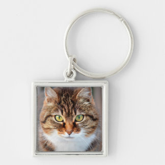 Portrait of Manx Cat Green-Eyed Silver-Colored Square Keychain