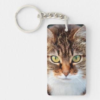 Portrait of Manx Cat Green-Eyed Double-Sided Rectangular Acrylic Keychain