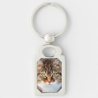 Portrait of Manx Cat Green-Eyed Silver-Colored Rectangular Metal Keychain