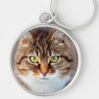 Portrait of Manx Cat Green-Eyed Silver-Colored Round Keychain