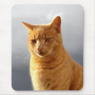 Portrait of Merlin the cat Mouse Pad