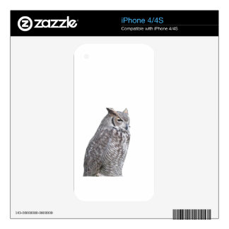 Portrait of owl isolated on white background decals for the iPhone 4S