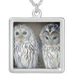 Portrait of owls silver plated necklace