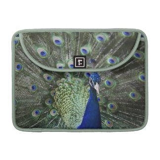 Portrait Of  Peacock With Feathers Out Sleeve For MacBooks