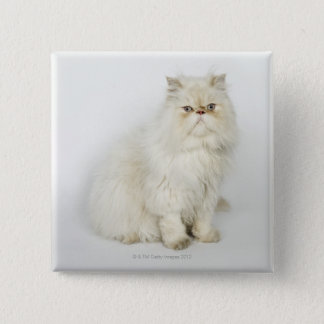 Portrait of Persian cat Button