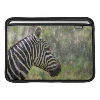Portrait Of Plains Zebra (Equus Quagga) Standing MacBook Air Sleeves