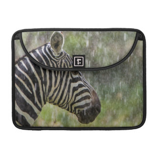 Portrait Of Plains Zebra (Equus Quagga) Standing Sleeve For MacBooks