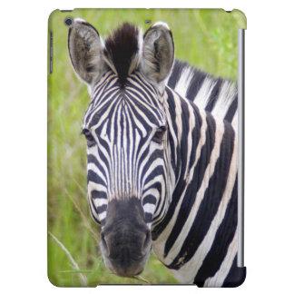 Portrait Of Plains Zebra, Hluhluwe-Umfolozi Game Cover For iPad Air