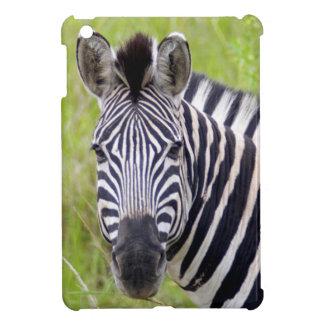 Portrait Of Plains Zebra, Hluhluwe-Umfolozi Game iPad Mini Cover