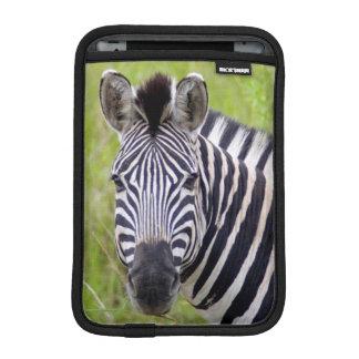 Portrait Of Plains Zebra, Hluhluwe-Umfolozi Game Sleeve For iPad Mini