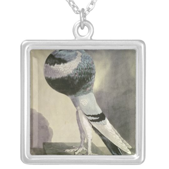 Portrait of Pouter Pigeon Silver Plated Necklace