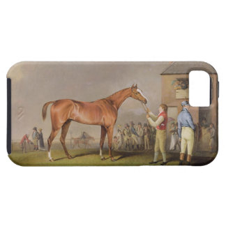 Portrait of 'Quiz', the property of Lord Rous, aft iPhone SE/5/5s Case