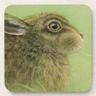 Portrait of rabbit grazing fine art coaster 6 set