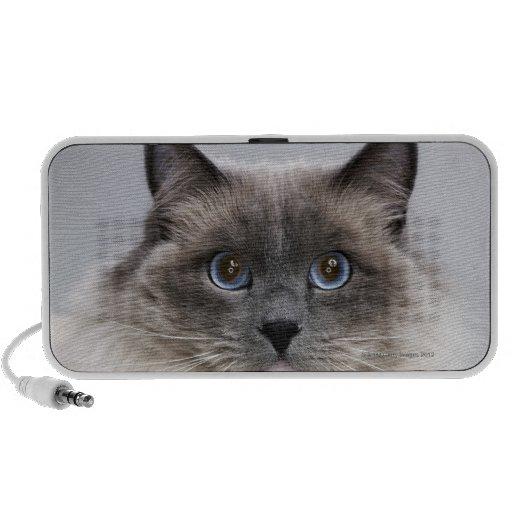 Portrait of Ragdoll cat Mini Speaker