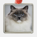 Portrait of Ragdoll cat Square Metal Christmas Ornament