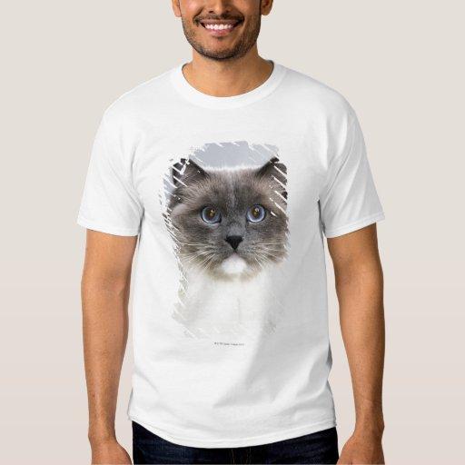 Portrait of Ragdoll cat Tee Shirts