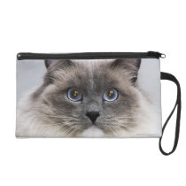 Portrait of Ragdoll cat Wristlet