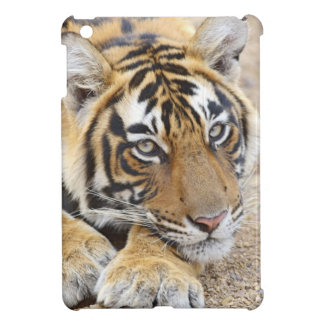 Portrait of Royal Bengal Tiger, Ranthambhor 4 Case For The iPad Mini