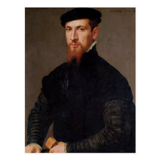 Portrait of Simon Renard  1553 Postcard