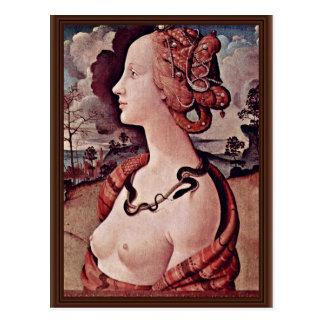 Portrait Of Simonetta Vespucci By Piero Di Cosimo Postcard