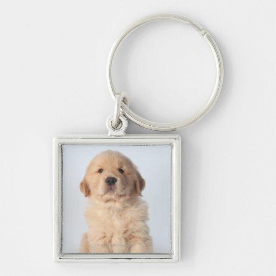 Portrait of six week old golden retriever puppy. keychain