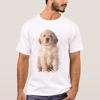 Portrait of six week old golden retriever puppy. T-Shirt