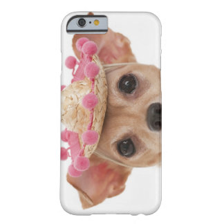 Portrait of small dog in sombrero barely there iPhone 6 case