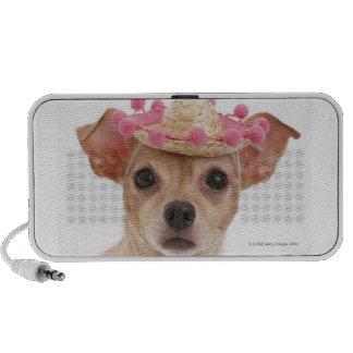 Portrait of small dog in sombrero portable speaker