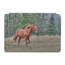 Portrait of Sorrel Mare Equine Horse Photo 2 iPad Mini Cover